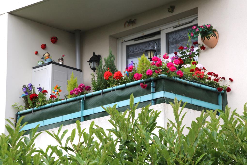 concours des maisons et balcons fleuris ville fleurie cadre de vie ville d 39 orly. Black Bedroom Furniture Sets. Home Design Ideas